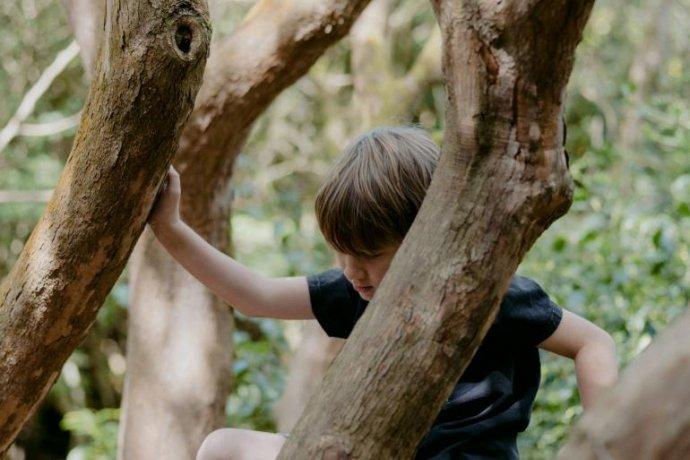 Que Limites: os dos Pais ou os dos Filhos